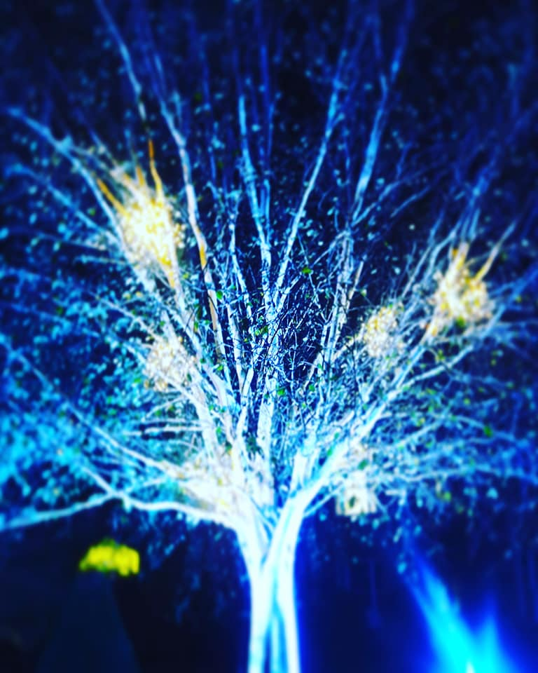 Tree Alnwick Gadrens Halloween Scare Garden
