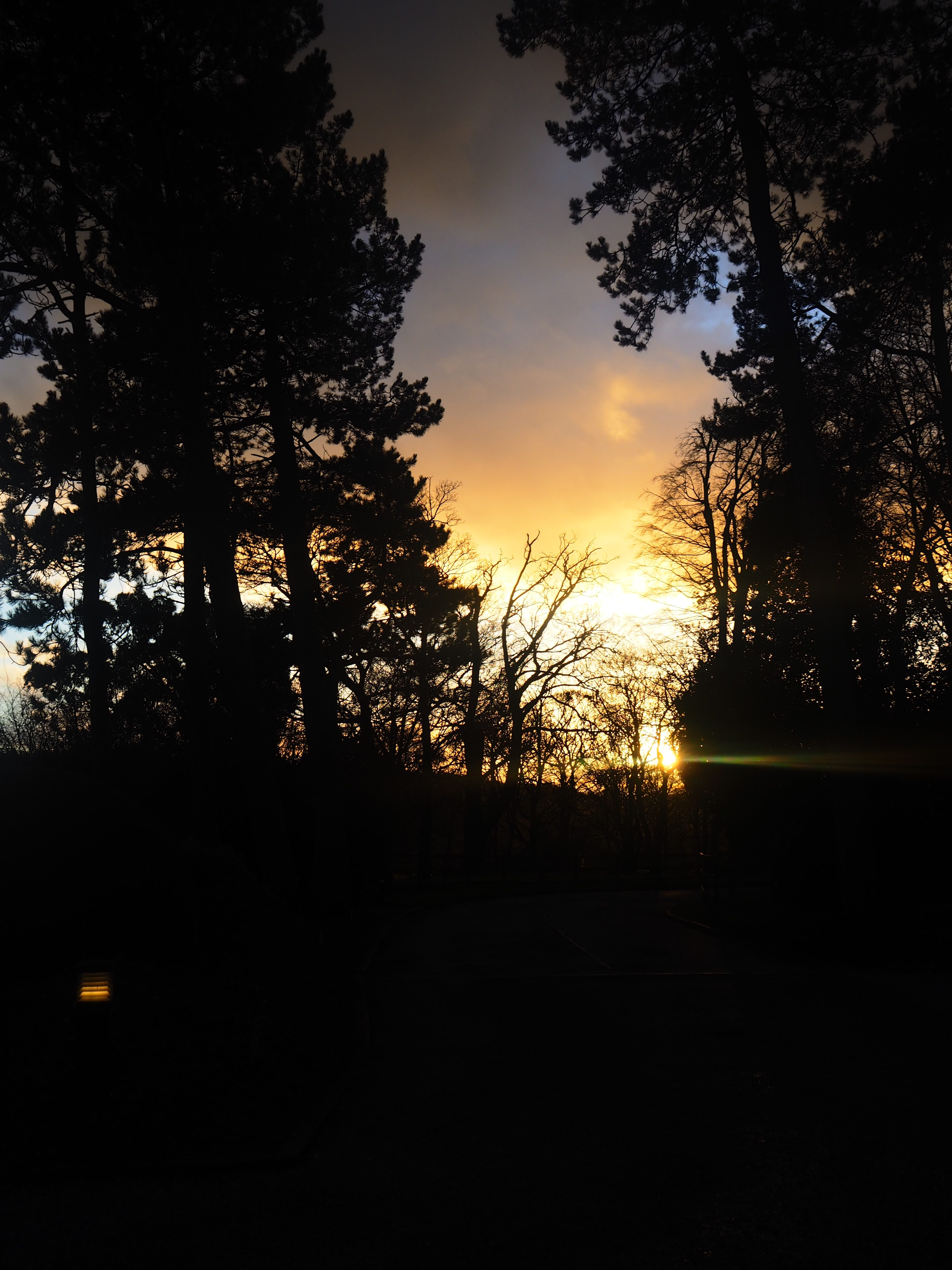 Sunset New Years Day Raywell Hall Country Lodges